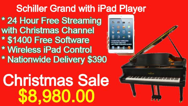 Schiller Performance iPad Player System