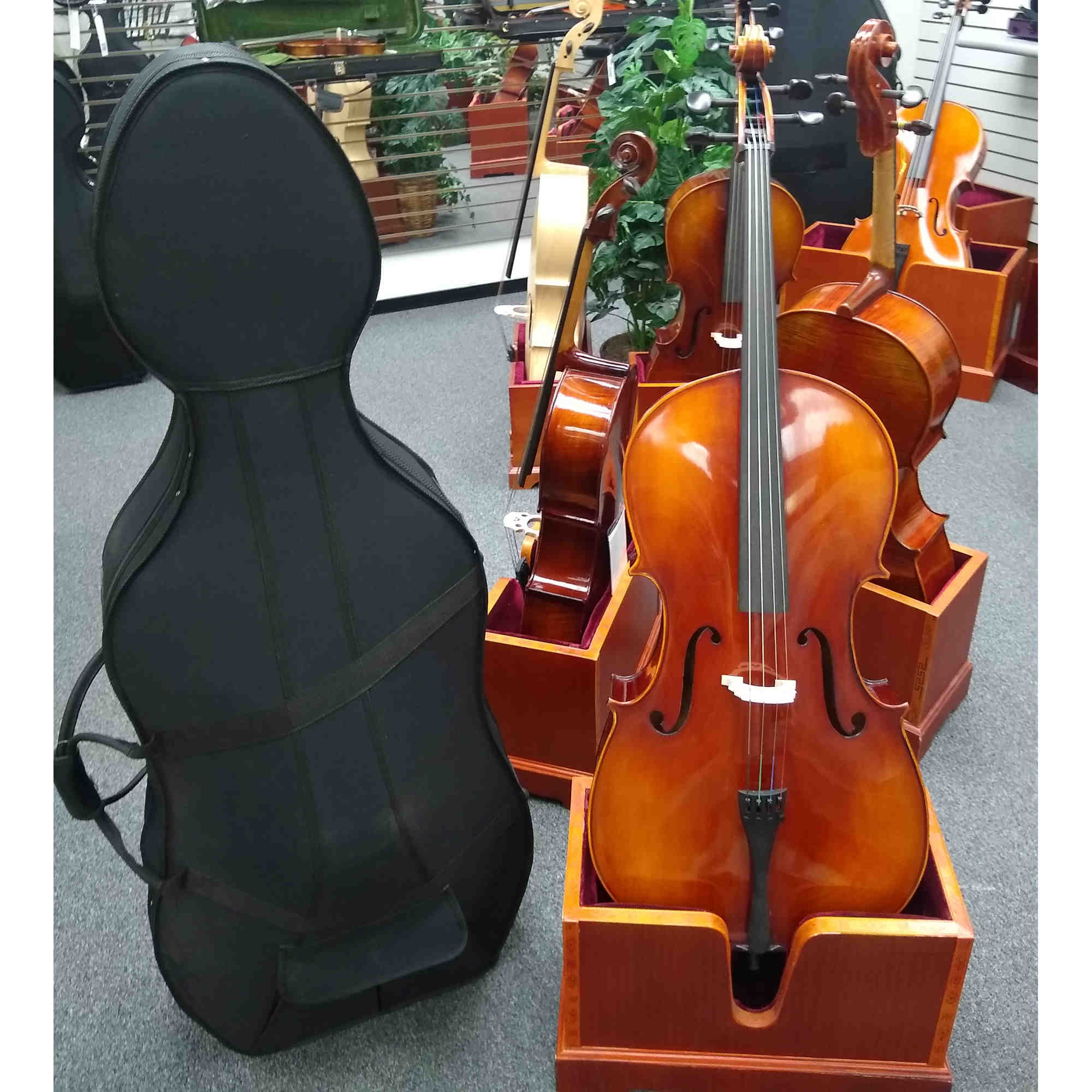 Vienna Strings Munich Cello With Hand Rubbed Finish New For 2021