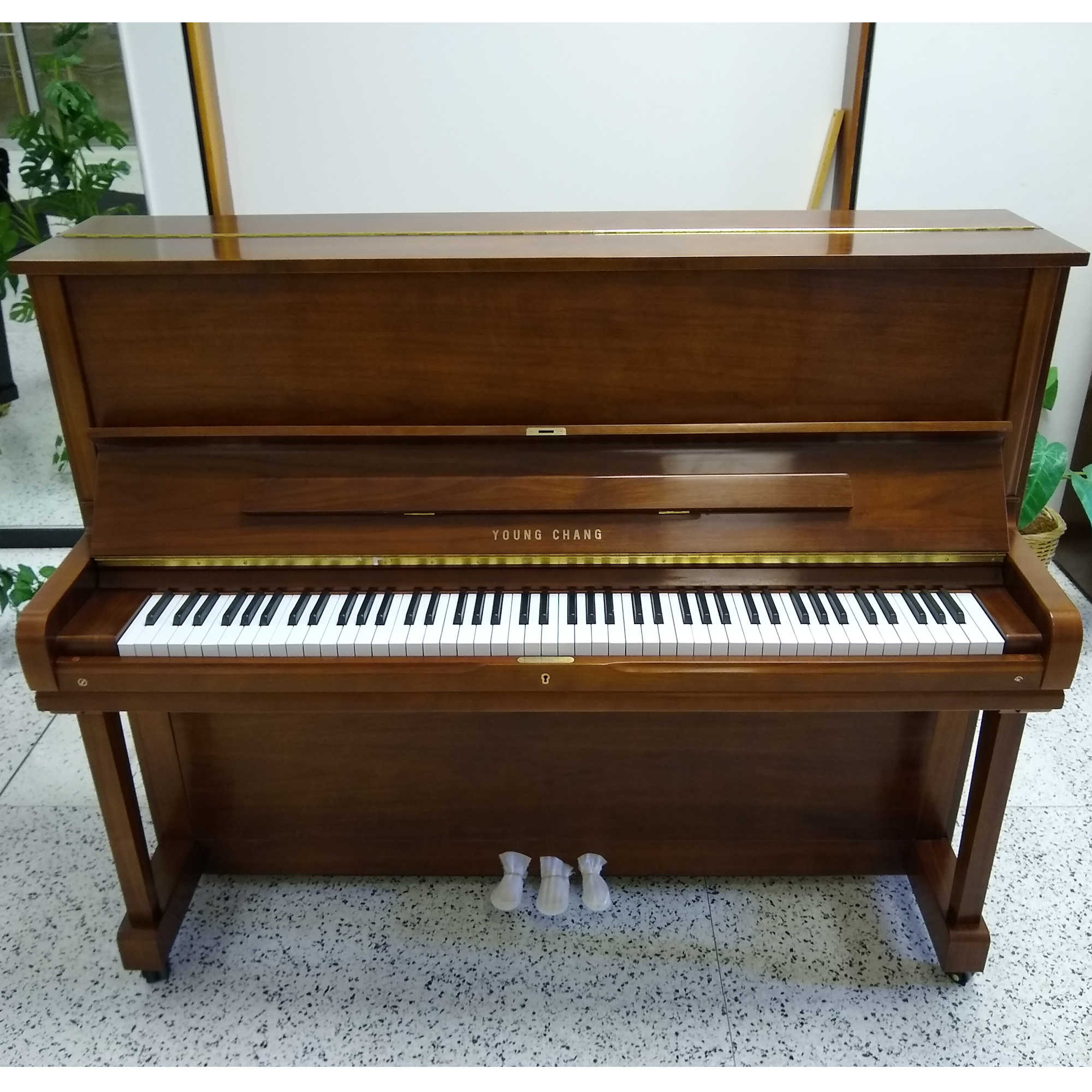 Young Chang Professional Upright 121 Collection Walnut Finish