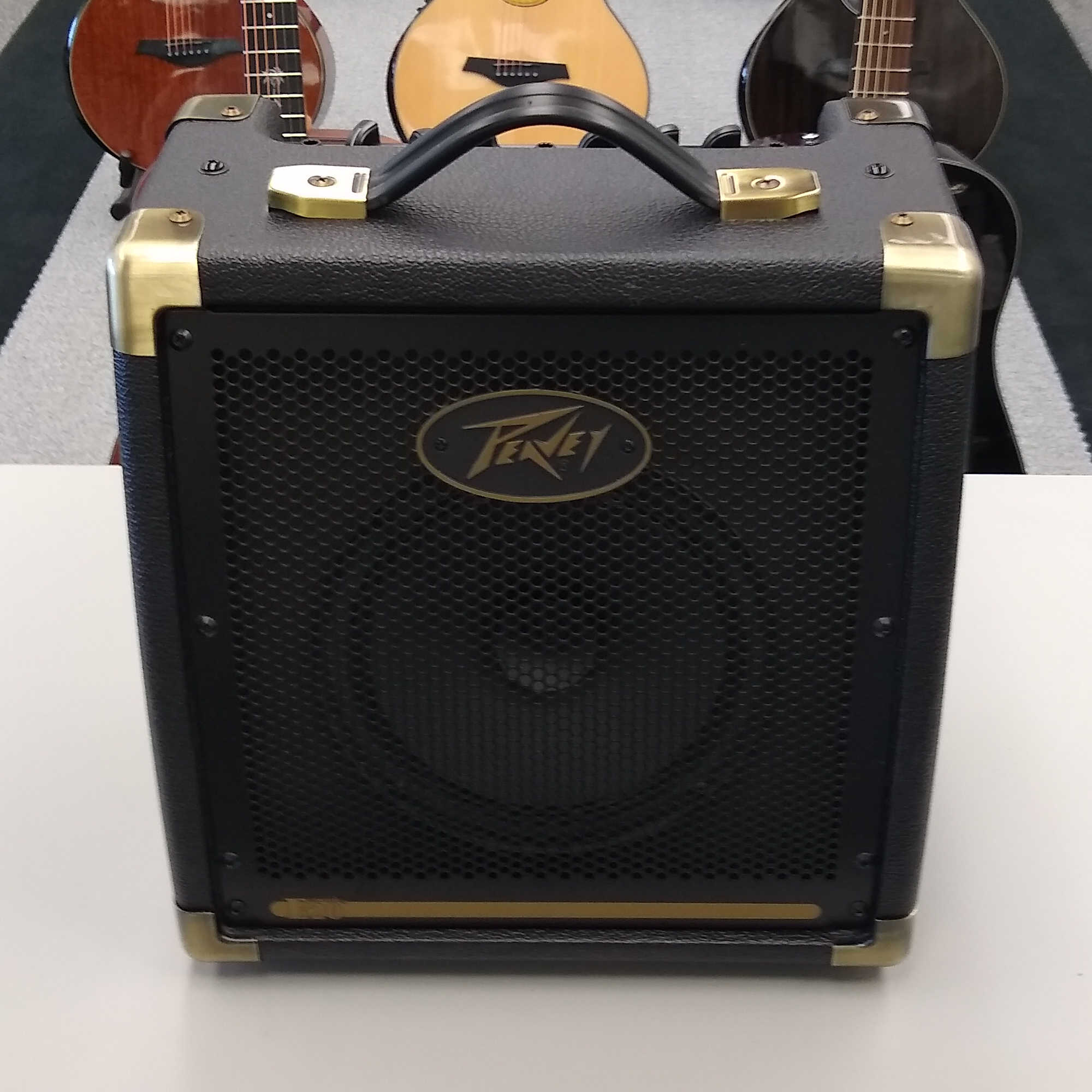 Peavey E20 Acoustic Amplifier