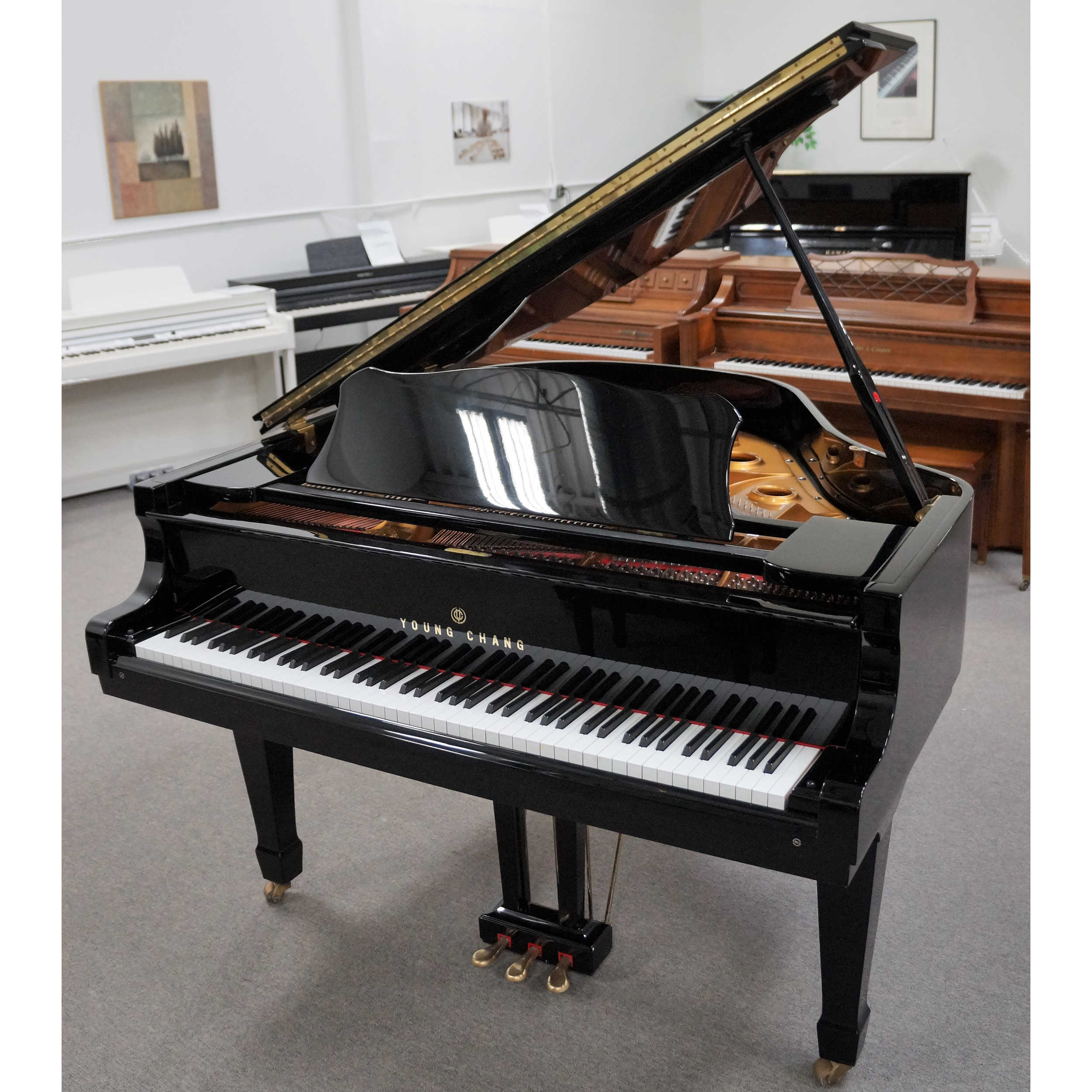 Young Chang Grand Piano 5\'2 Black Polish