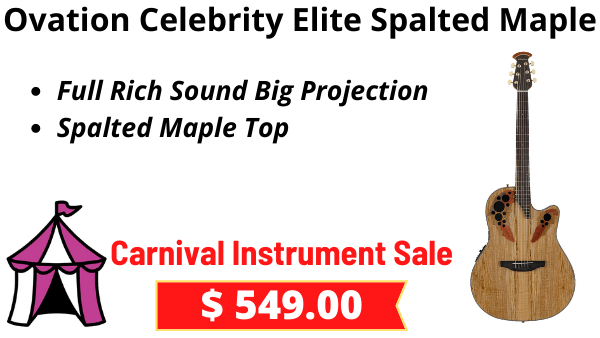 Ovation Celebrity Elite Spalted Maple