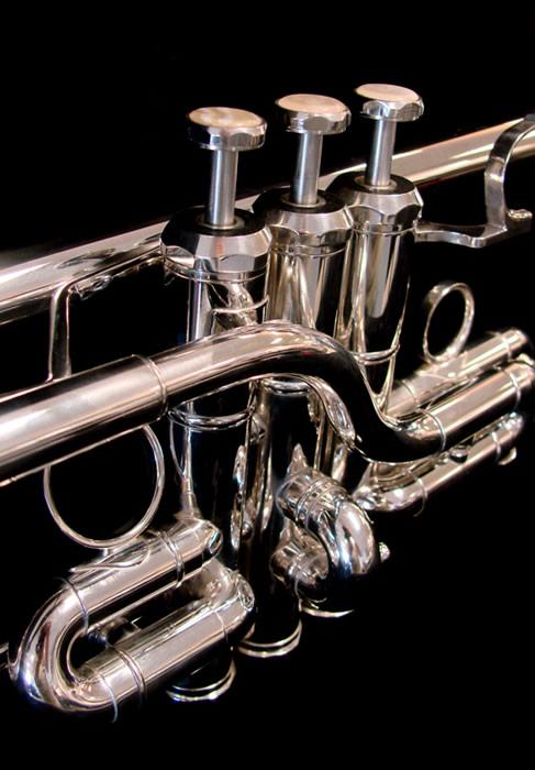 Schiller American Heritage Model Eb/D Trumpet