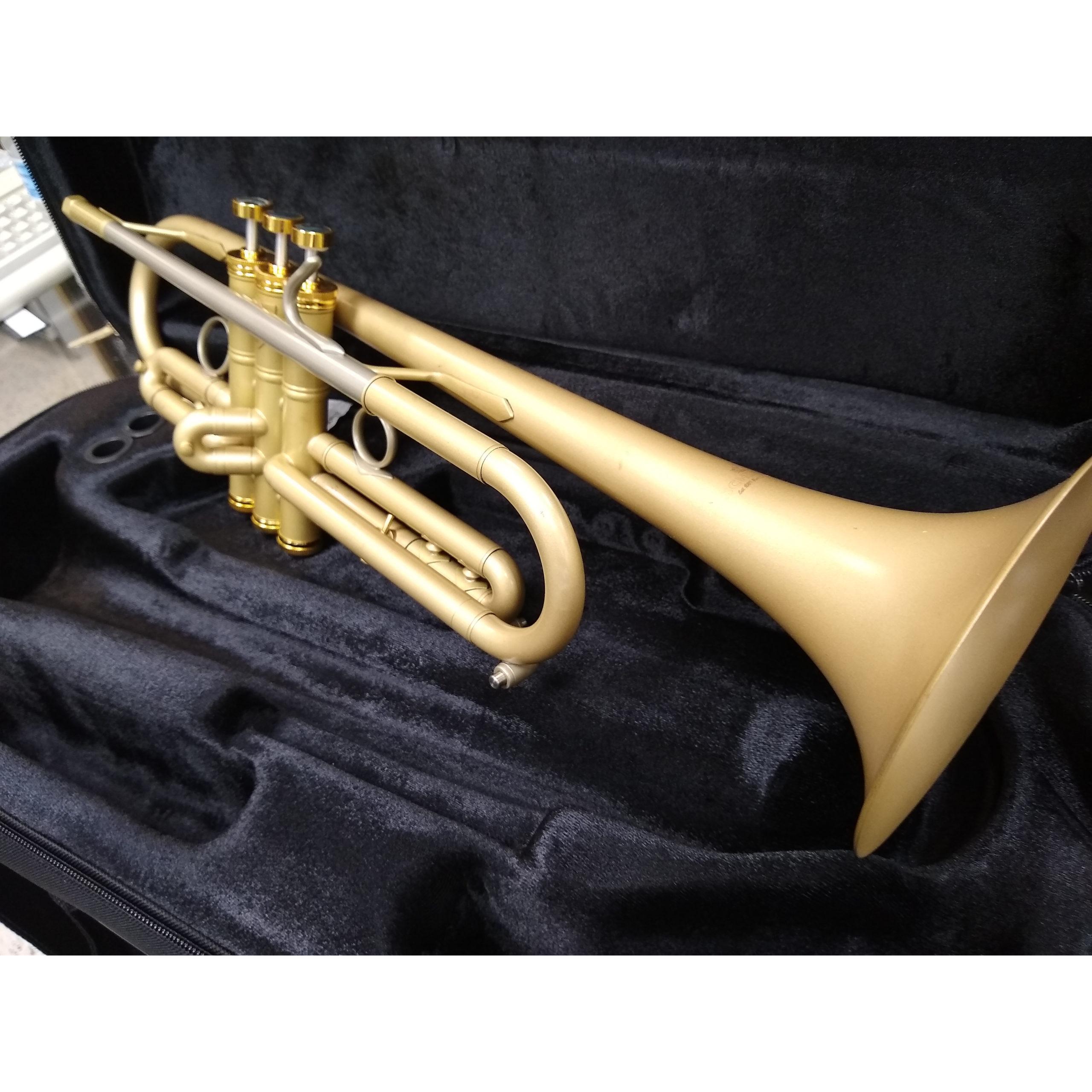 Schiller Centertone Vintage Trumpet
